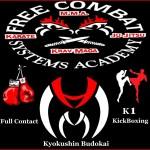 Logo freecombat/mugellomartialarts